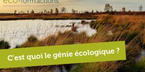 C'est quoi le génie écologique ?